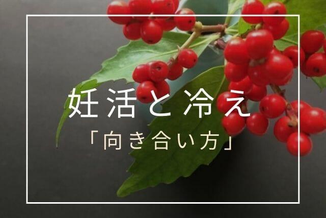 妊活と冷え【コラム・東京鍼灸】