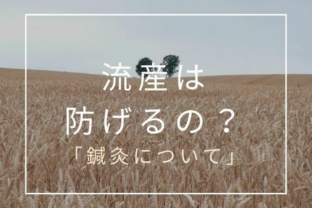 鍼灸で流産予防【コラム・東京鍼灸】