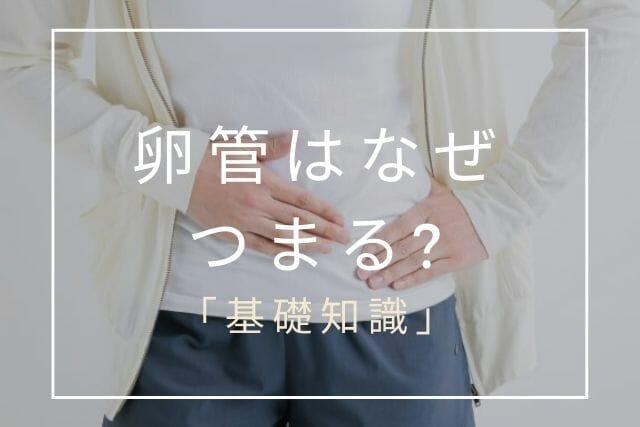 卵管はなぜ詰まる【コラム・東京鍼灸】